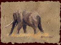 remarque on Elephant Dung paper