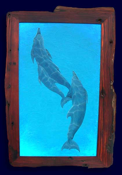 Indo pacific Humpback Dolphins